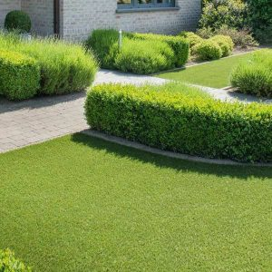 Free Artificial Turf Quotes