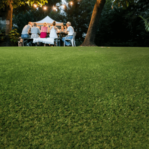 A group of people sat around an outdoor dining table, with fairy lights above them, In the foreground, artificial grass