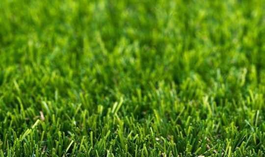 Bright artificial grass yarns